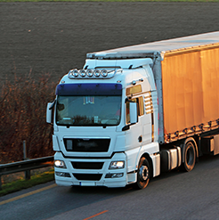Logistics services from Plum Group Foods